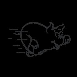 Cochon qui court
