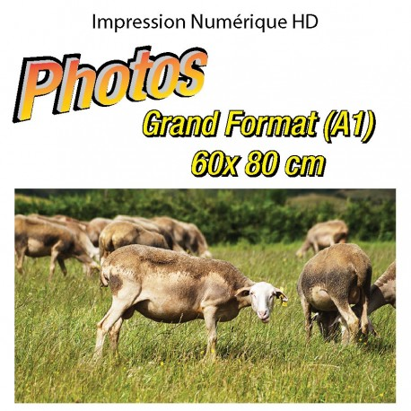 Impression Photo A1