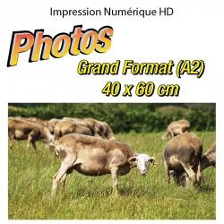 Impression Photo A2