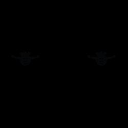 kit-roseau-vitres-laterales-Daf