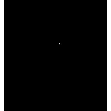 sticker-logo-Iveco-cheval