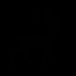 cerf-01